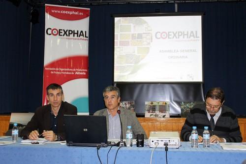 Manuel Galdeano, primero por la izquierda, en la Asamblea de COEXPHAL.
